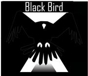 black birds squadron