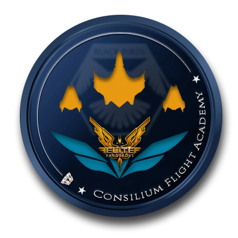 Consilium Flight Academy